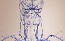 Венозная дисгемия — симптомы, опасности, проявления, диагностика