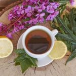 Иван чай при варикозе, состав, свойства, противопоказания, рецепты